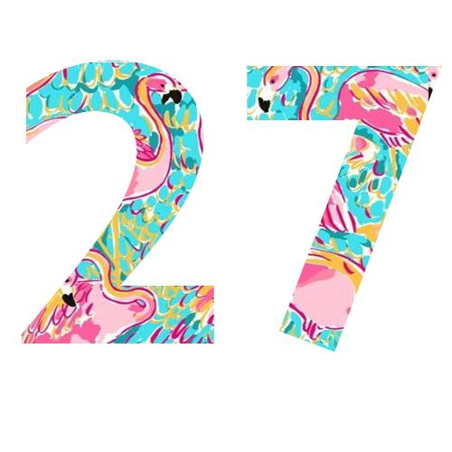 27 lilly flamingo print